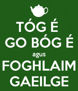 tog-e-go-bog-e-agus-foghlaim-gaeilge-1